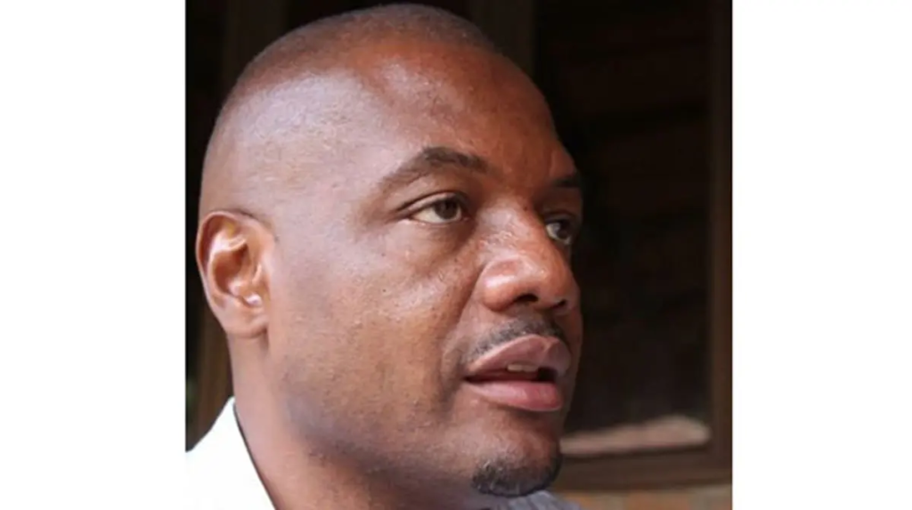 JUST IN: Journalist Hopewell Chin'ono Arrested Again