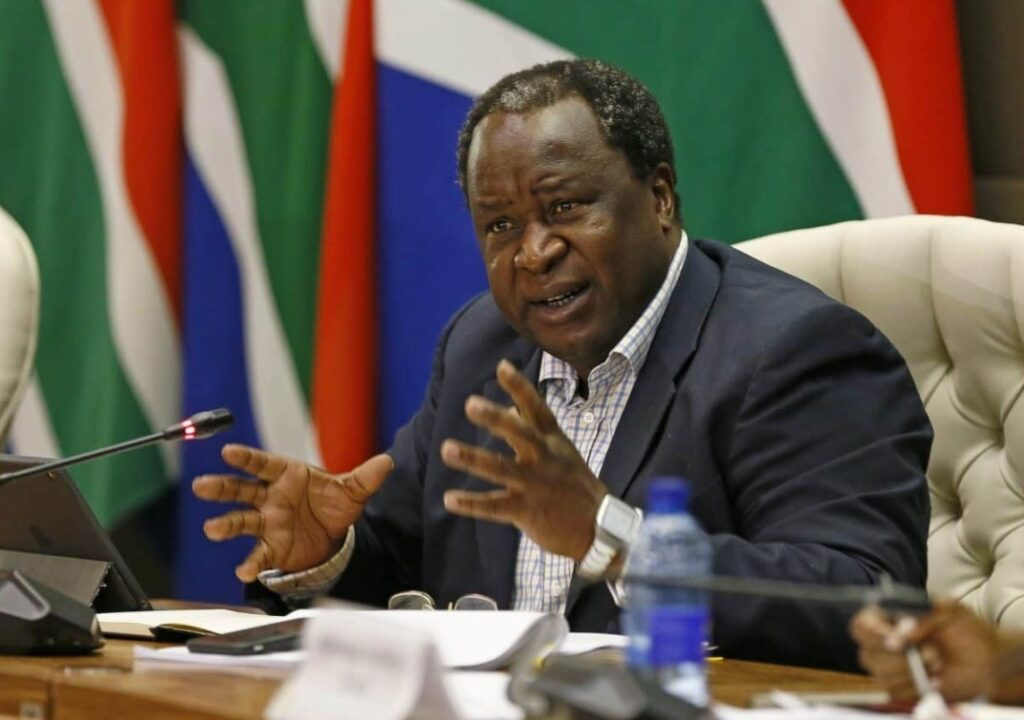 Ramaphosa reprimands finance minister over tweets on Zambia