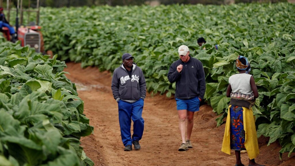 Is ED reversing the 'Land Reform Program'? What you need to know
